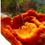 roasted-pumpkin-900