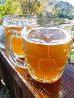 Stinging nettle water kefir