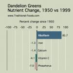 Dandelion_Greens_Nutrient_Decline