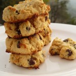 Coconut Flour Chocolate Chip Cookies @ Traditional-Foods.com