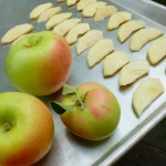 Freezing Apples @ Traditional-Foods.com