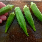 Okra Tip @ Traditional-Foods.com