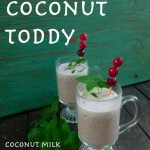 Cranberry Coconut Toddy @ Traditional-Foods.com