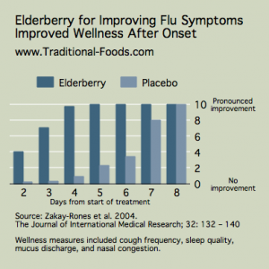 Elderberry for Flu Symptoms @ Traditional-Foods.com